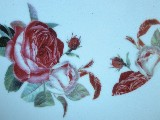 Decal, Pink Roses
